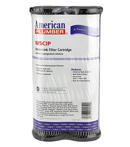 American Plumber W5CIP Taste/Odor Filter Cartridge (2-pack) by American Plumber