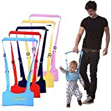 Baby Handheld Toddler Walking Wings Helper Safety Harnesses Learning To Walk Assistant Stand Up and Walking Protective Belt (Red)