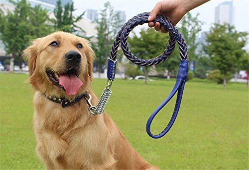 NACOCO Dog Braided Cowhide Leather Leash Dog Training/walking Leash Collar Combo with Studded Collar and Hole Puncher, Fit Medium to Large Breeds (Blue) - Dog Combo Collar