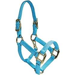Intrepid International Nylon Miniature Horse Halter, Light Blue, Mini