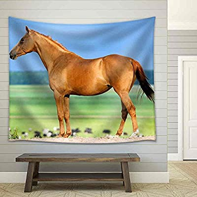 Quality Creation, Dazzling Print, Chestnut Budenny Horse Looking on The Cows at Field Fabric Wall