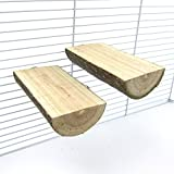 Alfie Pet by Petoga Couture - Edmond Wooden Stand 2-Piece Set for Birds - Size: Medium