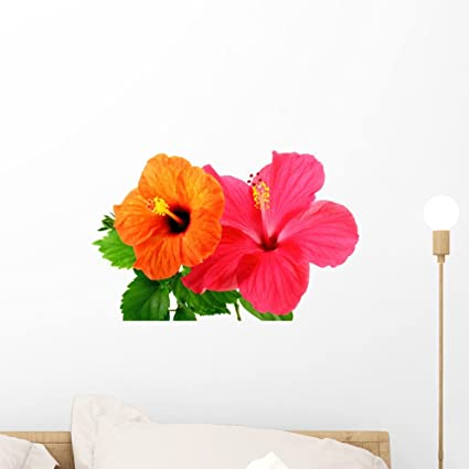 Wallmonkeys Hibiscus Flowers Wall Decal Peel and Stick Graphic WM162143 (18 in W x 11  sc 1 st  Amazon.com & Amazon.com: Wallmonkeys Hibiscus Flowers Wall Decal Peel and Stick ...