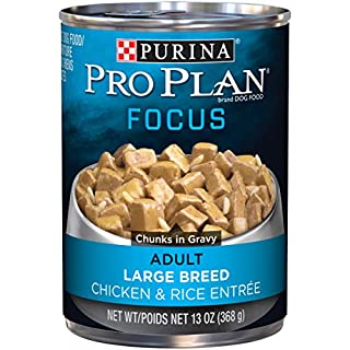 Purina Pro Plan Large Breed Gravy Wet Dog Food, FOCUS Chicken & Rice Entree - (12) 13 oz. Cans