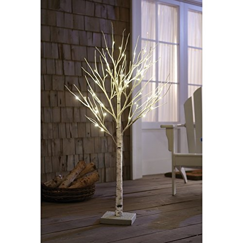 Order Home Collection 4-foot Decorative LED Birch Tree 4' Cedar Plug