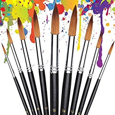 9Pcs Professional Round Watercolor Paint Brushes Set Fine Tip Nylon Paint Brush for Watercolor Acrylic Oil Painting
