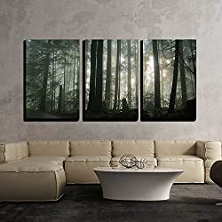 wall26 - Foggy Forest - Canvas Art Wall Decor - 24x36x3 Panels