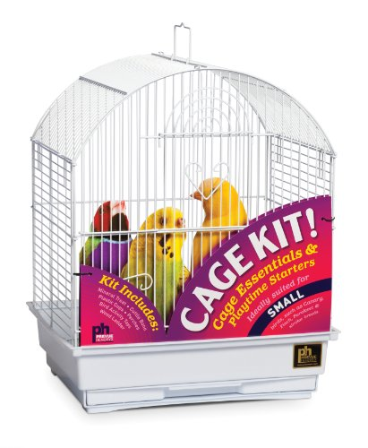 - Great Companions Parrot Starter Set - Prevue White Round Top Bird Cage Kit