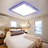 Modern LED Flush Mount 12W 900lm Acrylic Ceiling Light 11'' Round Lamp Lighting Fixture for Bedroom Living Room Dining Room Wedding Blue+ White Color