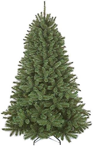 Amazon.com: Triumph Tree 788040 Nordmann Abies - Árbol de ...