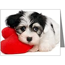 CafePress - Lover Valentine Havanese Pup Note Cards (Pk Of 10) - Blank Note Cards (Pk of 10) Glossy