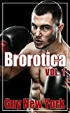 Brorotica Vol. 1: Five Stories of Straight Men and Gay Sex