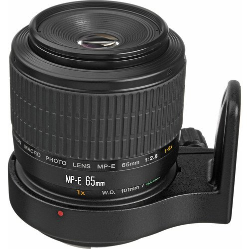 (Canon MP-E 65mm f/2.8 1-5X Macro Lens for Canon SLR Cameras International Version (No Warranty))
