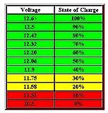 12vtechnology Automotive Battery Discharge Low