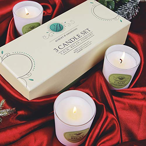 Aubert & Amandine Aromatherapy Luxury Scented Soy Candle Gift Set in White Jar Velas Aromaticas - Lavender Vanilla, Sandalwood Jasmine, Cinnamon Apple