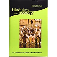 Hinduism and Ecology: The Intersection of Earth, Sky, and Water