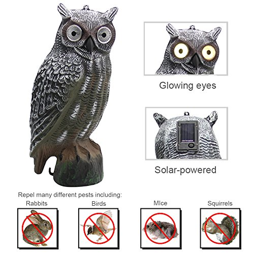 YOFIT  Solar Bird Scarecrow Fake Horned Owl Decoy, Bird Repellent Garden Protectors, Natural Enemy Pest Deterrent Scarecrow by YOFIT