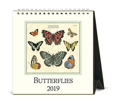 Butterfly Calendar - Cavallini Papers & Co. CAL19-13 Calendar, Multicolor