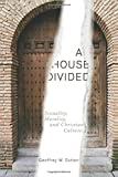 A House Divided: Sexuality, Morality, and Christian Cultures