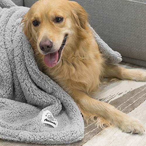Allisandro [Upgrade Double Layer] Pet Premium Throw Blanket for Dog Cat Puppy Kitten Super Soft Fleece Velvet Four Color Three Size 39'' X 31'' Light Grey by Allisandro (Image #7)