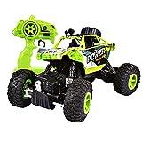 SainSmart Jr. RC Rock Crawler, 2.4 GHz Radio Control Off-Road Climbing Car, 4WD 1/18 Monster Truck, Green