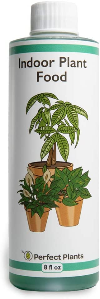 Perfect Plants Liquid Indoor Plant Food | 8oz. of Concentrated All-Purpose Fertilizer | Use with All Varieties of Houseplants