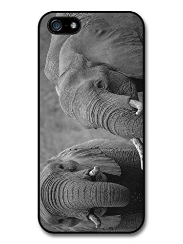 Black and White Elephants Photography Cute Beautiful Wild Animals case for iPhone 5 5S