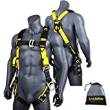 KwikSafety SUPERCELL | Safety Harness | ANSI OSHA Full Body Personal Fall Protection |1 Dorsal Ring 2 Side D-Rings Grommet Tongue Buckle Straps & Tool Lanyard | Universal Construction Tower Roofing