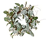 Worth Imports 22'' Magnolia Leaves Wreath w/White Berries