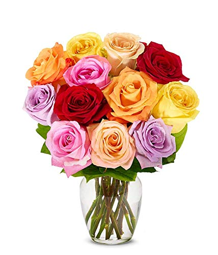 Flowers – One Dozen Rainbow Roses (Free Vase Included)