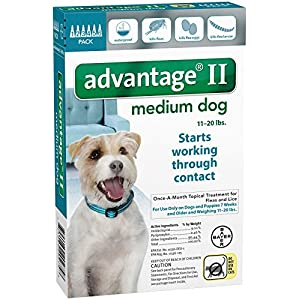 Bayer Animal Health Advantage II Medium Dog 6-Pack