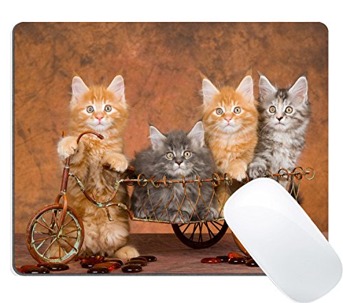 Wknoon Gaming Mouse Pad Custom Design Mat, Cute Cats on a Bike