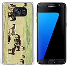 Luxlady Samsung Galaxy S7 Edge Clear case Soft TPU Rubber Silicone IMAGE ID 30719401 Horses in the mountains equine nag hoss hack dobbin a solid hoofed plant eating domesticate
