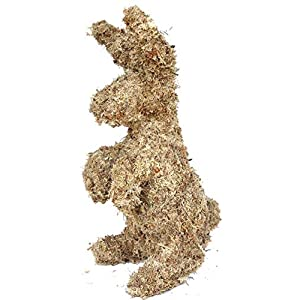 Rabbit Topiary Form 17 inches high 19