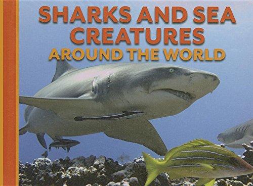 Sharks and Sea Creatures Around the World (Animals Around the World) pdf epub