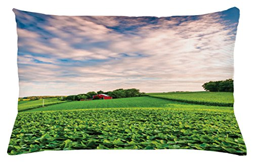 Lunarable Nature Throw Pillow Cushion Cover, Sunset Clouds Over a Farm in Southern York Pennsylvania Nature Scenery, Decorative Accent Pillow Case, 26 W X 16 L Inches, Lime Green Blue Red
