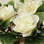 Lopkey-2-Bunch-Silk-Artificial-Gardenia-Flowers-Wedding-Home-DecorWhite