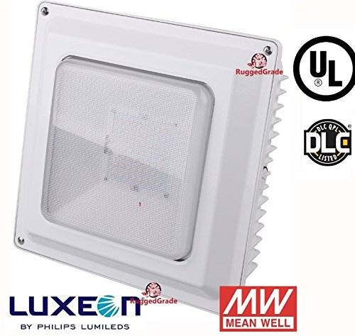 Watt LED Ceiling Light efficient
