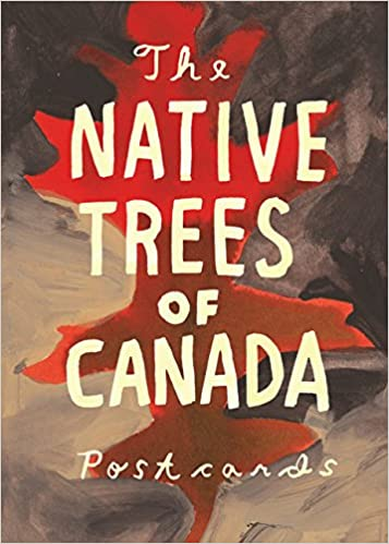 native trees of canada a postcard set postcard set with 30 postcards