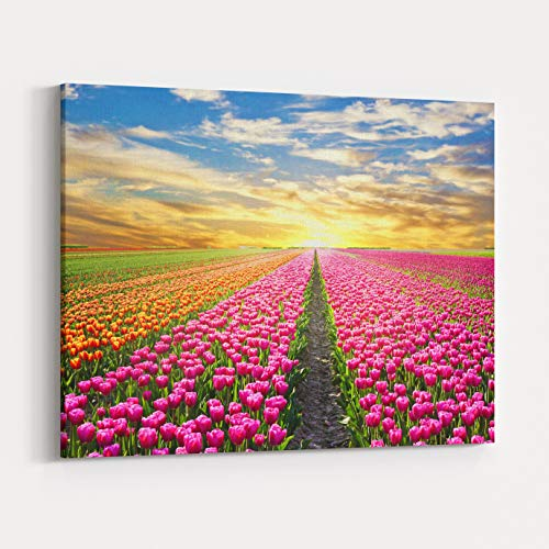 Rosenberry Rooms Canvas Wall Art Prints - A Magical Landscape with Sunrise Over Tulip Field in The Netherlands (10 x 8 inches) (Florist Netherlands)