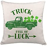green decorative pillows amazon com rh amazon com