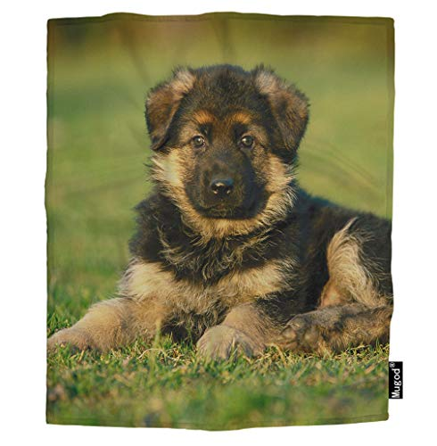 Mugod Dog Blanket Friendly Furry German Shepherd Puppy Lying on The Lawn Grass Green Fuzzy Soft Warm Flannel Throw Blankets for Boys Girls Dog Cat Home Couch Outdoor Travel Use 40W x 50H Inch
