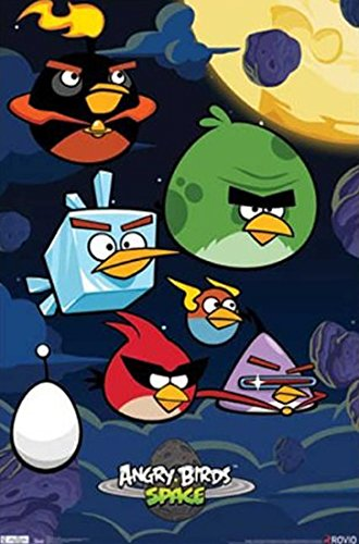 Download Angry Birds Space pdf epub