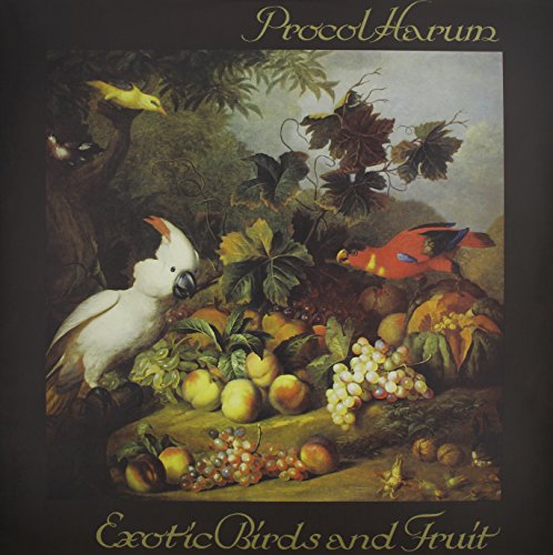 - Exotic Birds And Fruit