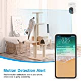 Home Security Camera, Baby Camera,1080P HD wansview