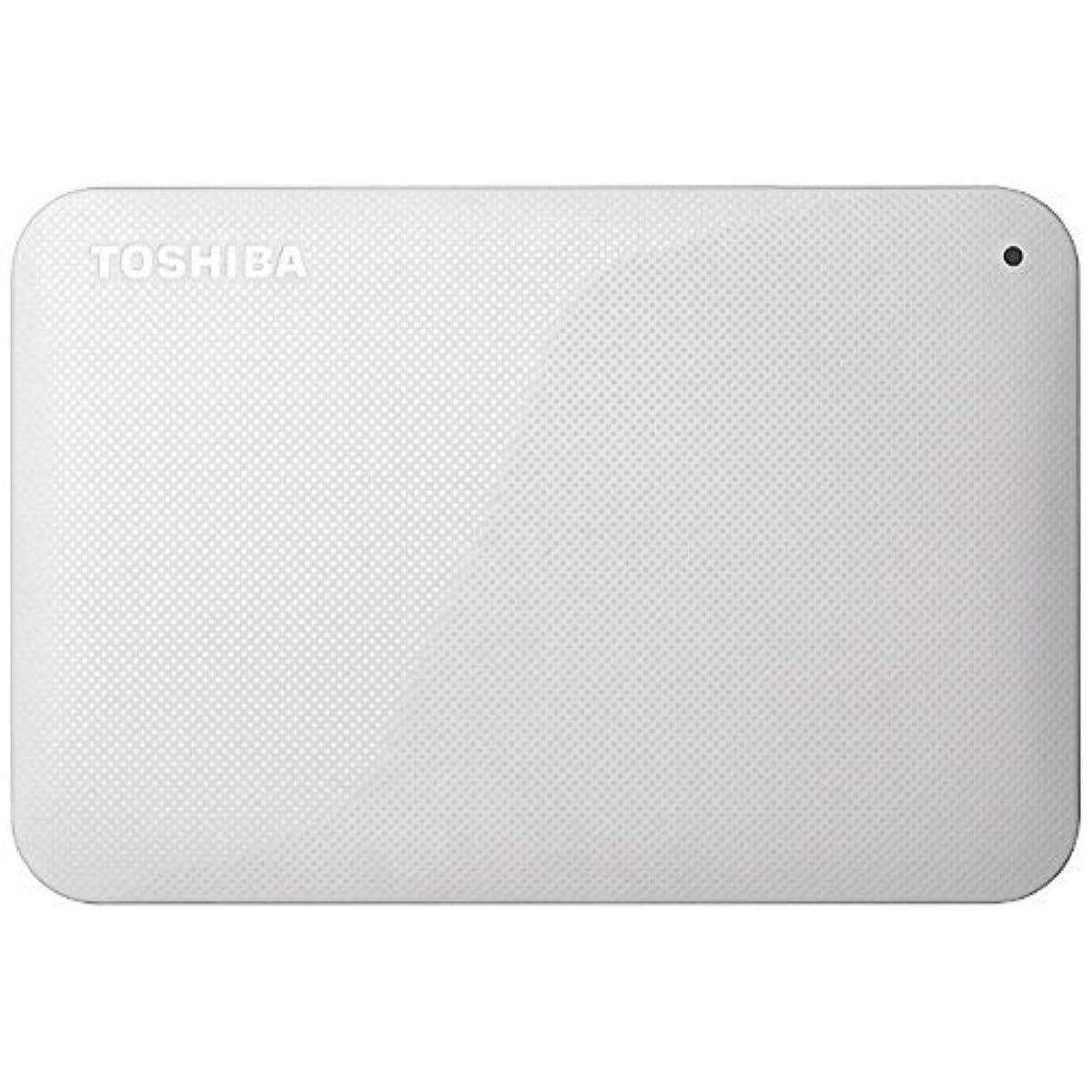 [해외] 도시바 휴대용 하드디스크 1TB / HD-AC10TW