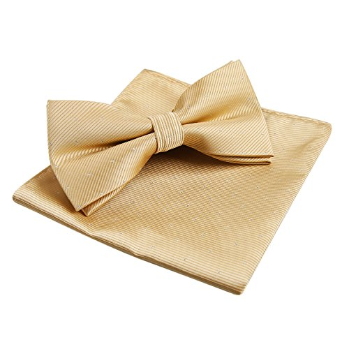 Men's Silver Dot Banded Bow Tie and Pocket Square Set, Champagne