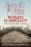 Pathways to Complexity: A View from the Maya