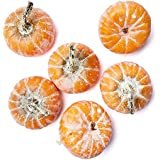 Factory Direct Craft 6 Festive Yellow Orange Mini Pumpkins