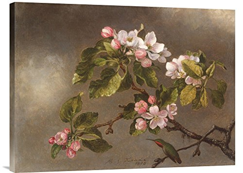 Global Gallery Budget Martin Johnson Heade Hummingbird and Apple Blossoms Gallery Wrap Giclee on Canvas Print Wall Art, 24 inches x 32 inches ()